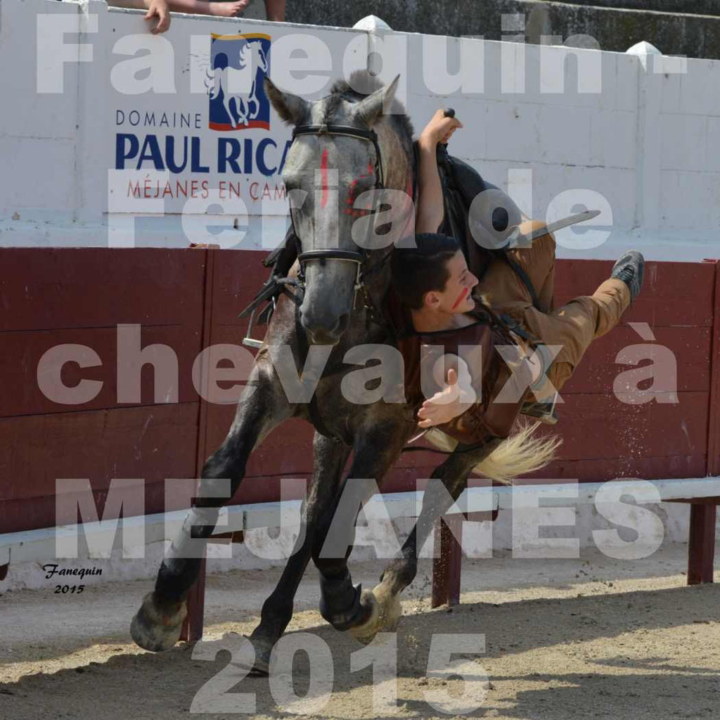 Feria du cheval 2015 à MEJANES - 2