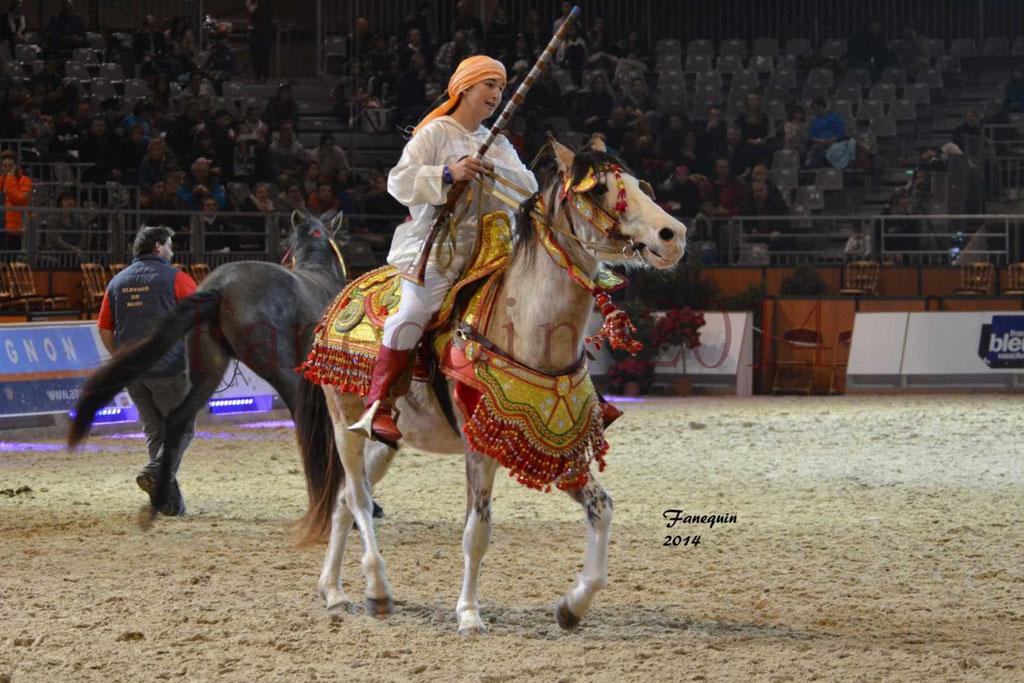 Show des races - Chevaux BARBE 28