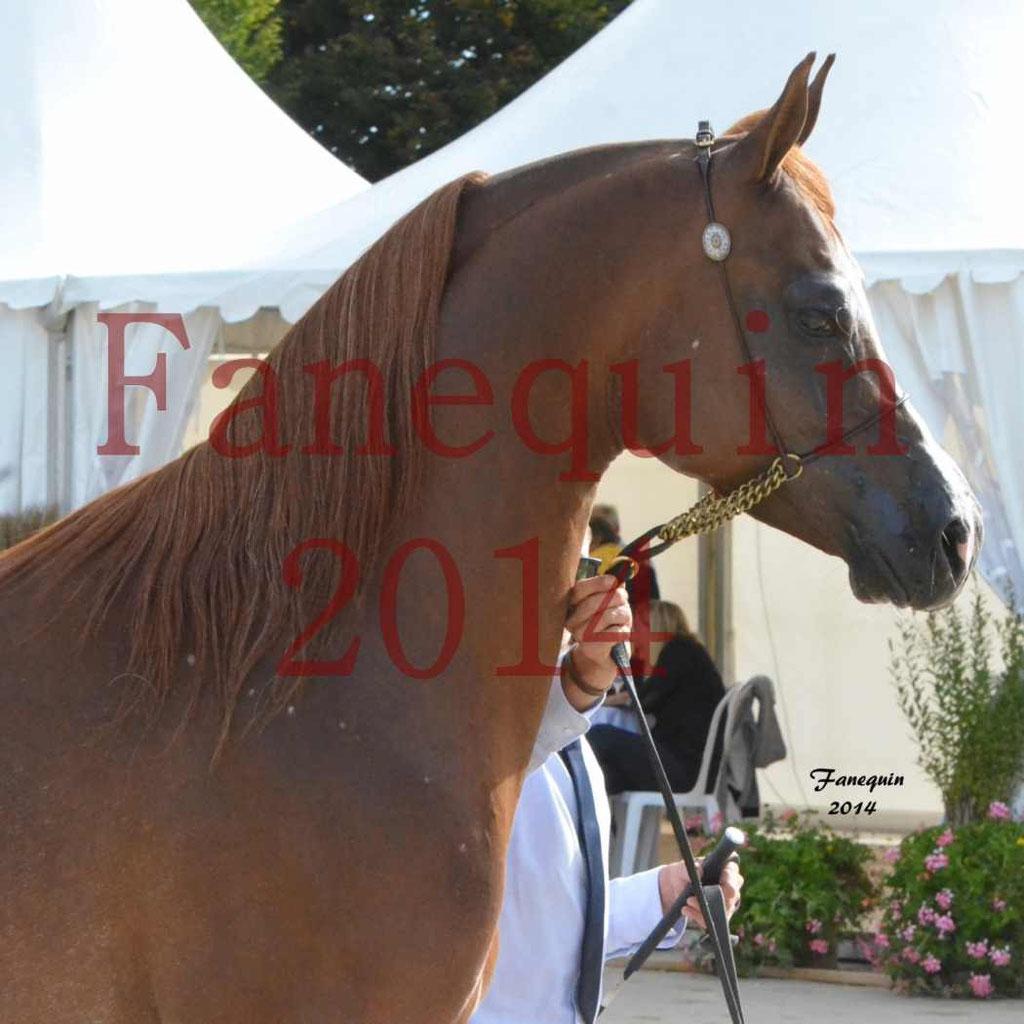 CHAMPIONNAT DE FRANCE 2014 A POMPADOUR - Notre Sélection - Portraits - AINHOA LE BASQUE - 1