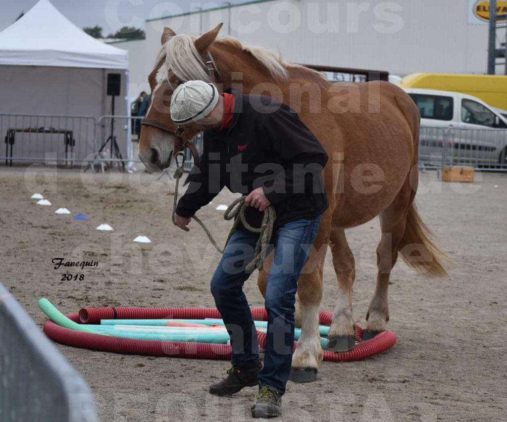 Concours Label Loisirs lors du concours Régional de chevaux de traits à REQUISTA en Octobre 2018 - 22
