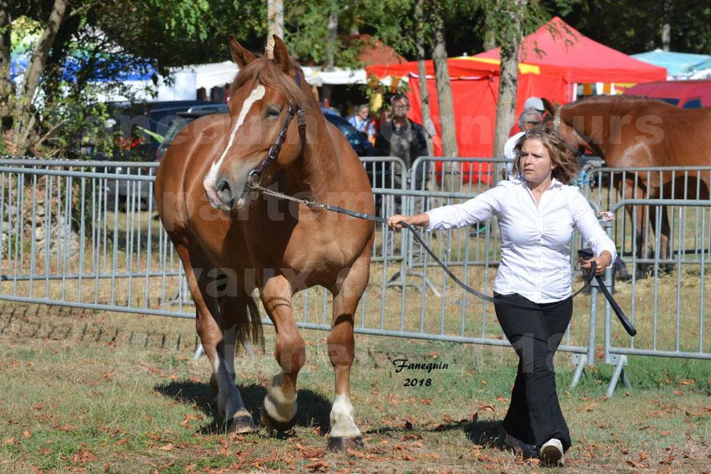 Concours départemental de chevaux de traits à GRAULHET en 2018 - Marjorie DEFRANCE - Notre Sélection - 2