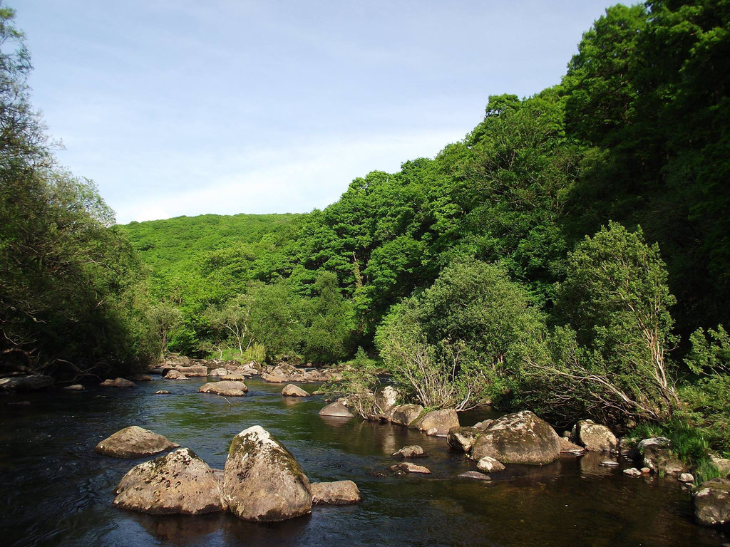 River Dart, Dartmoor, Devon, England