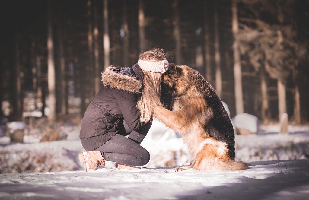 Bilder Von Hund Und Herrchenfrauchen In Bautzen Fotograf Mit Herz