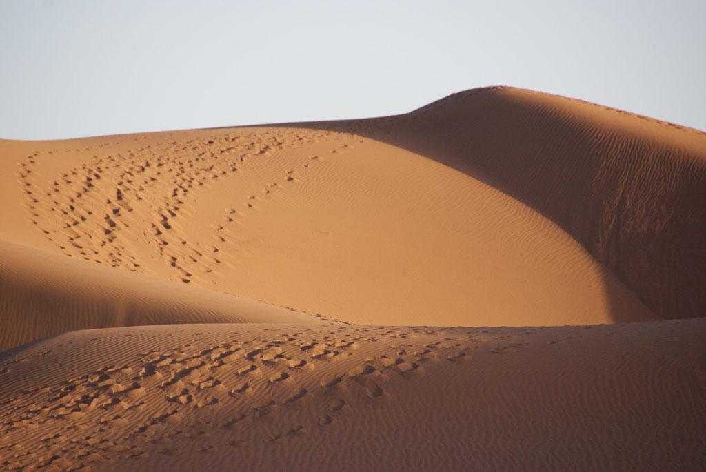 Dunes pendant un trek Mélodie du désert