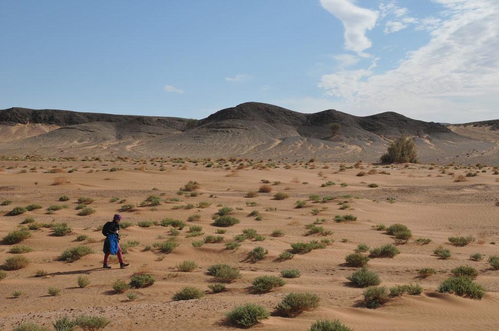 Voyage et trek en famille dans le désert marocain avec l'agence locale Mélodie du désert