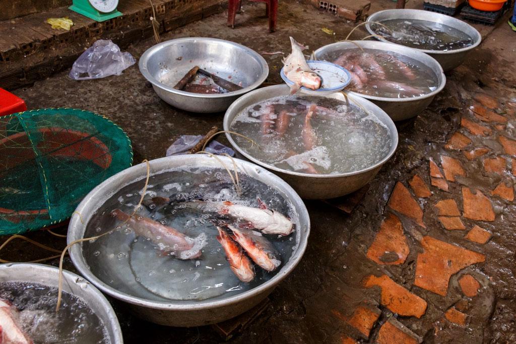 Dalat Local Markt