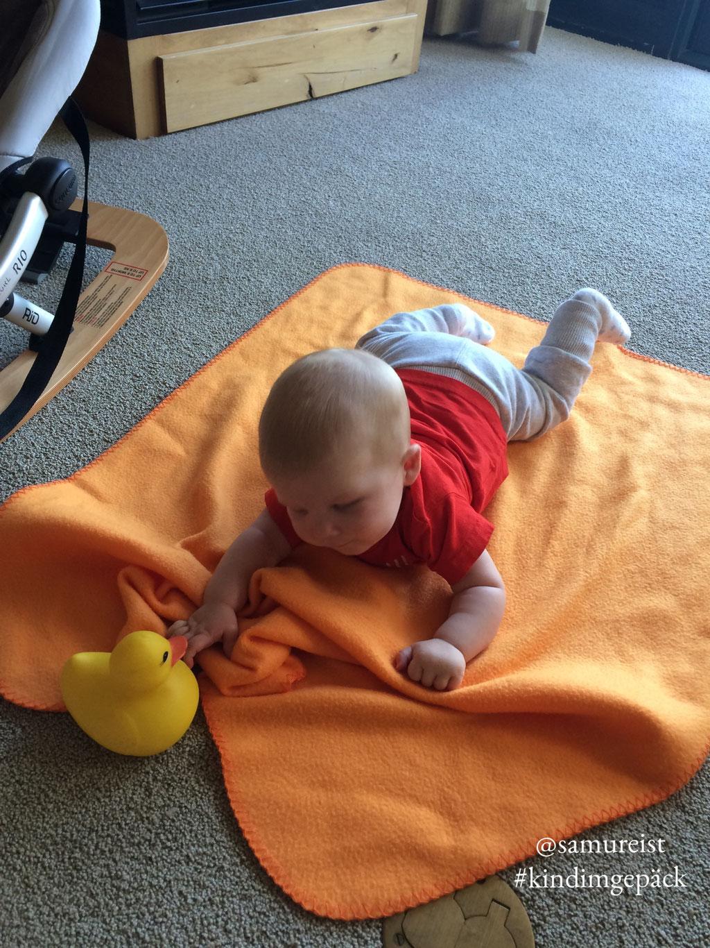 Baby Samu geniest das Relaxen auf der Decke.