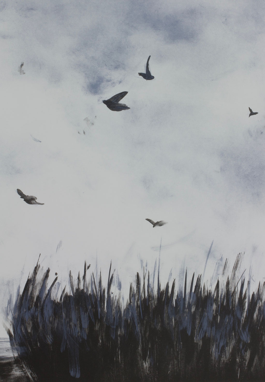 Fliegen 45,5 × 32,0 cm