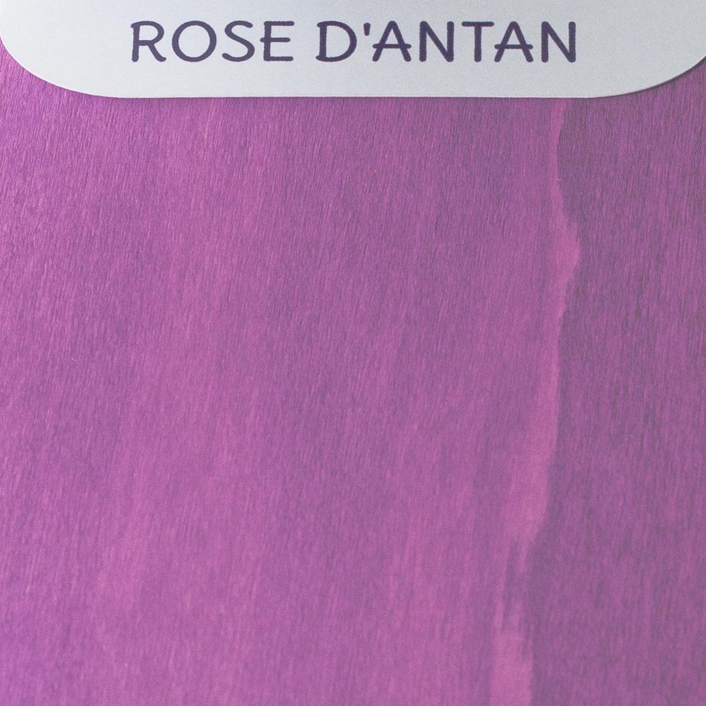 Rose d'antan - Nuancier Le Chaton et sa Poulette