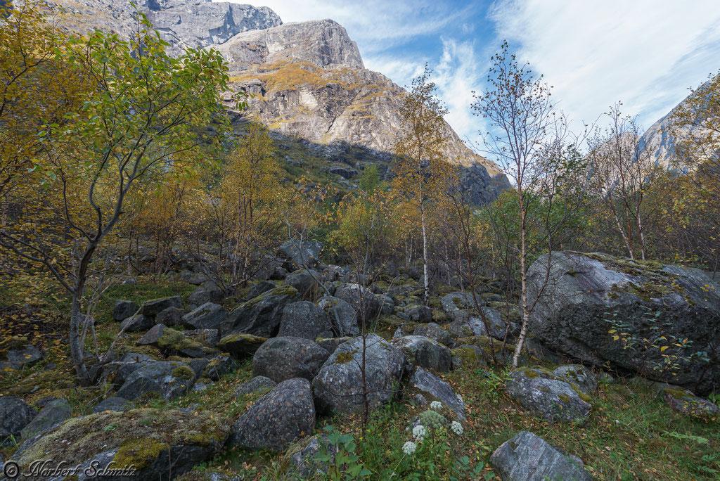 Kjenndal-Gletscher-Umgebung
