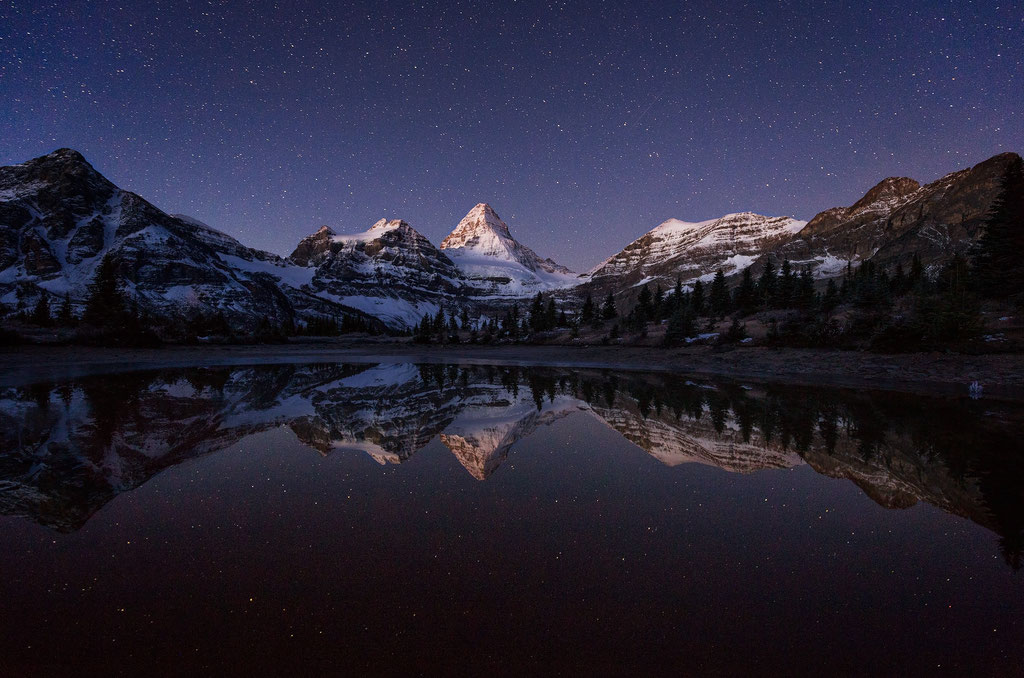 Mount Assiniboine reflecting in a pond during early morning hours