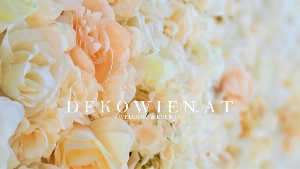 Blumenwand mieten ivory-apricot