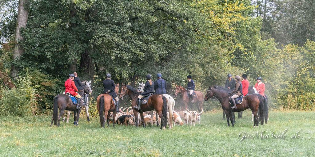 Jagdfotos vom Team @Givemeasmile.de auf der Fotojagd, Peter Jäger   #givemeasmilede #taunusmeute #rheinlandmeute #foxhounds #jagdreiten #schleppjagd