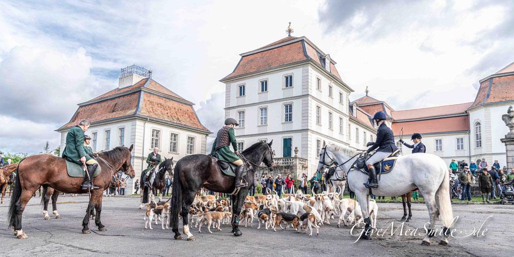 Jagdfotos vom Team @Givemeasmile.de auf der Fotojagd, Peter Jäger   #schlossfasanerie #givemeasmilede #taunusmeute #vogelsbergmeute #foxhounds #beagles #jagdreiten #schleppjagd
