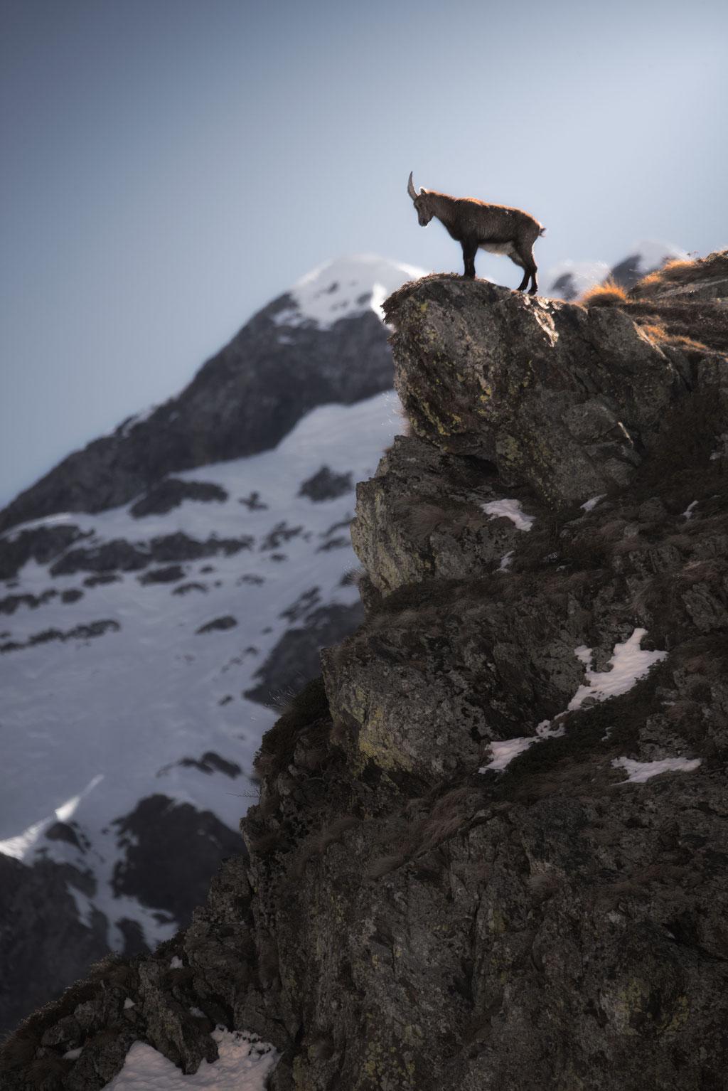 Étagne - Vallée de Champoléon  - (Hautes Alpes-France) © Arzur Michaël
