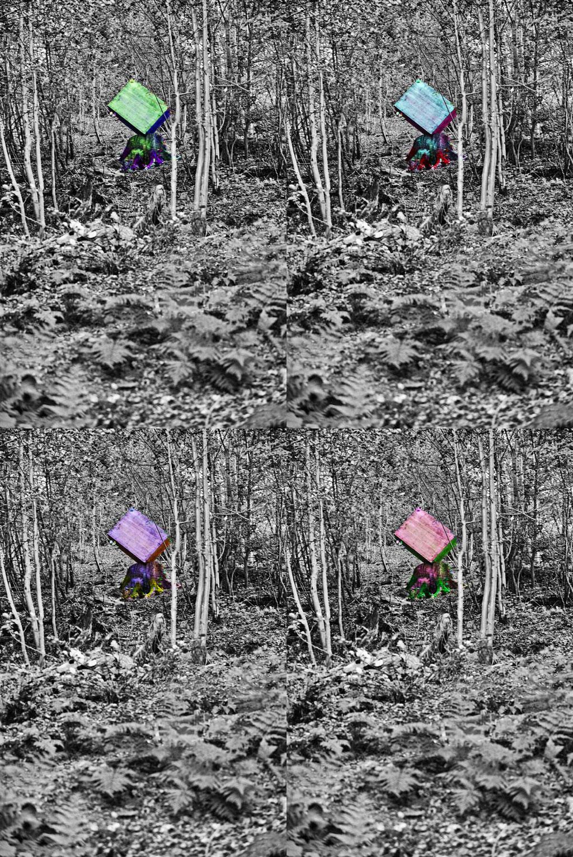Künstler: Birkenstock-KotallaH - Forstwirtschaft; Foto und Bildbearbeitung Volker Grünenthal