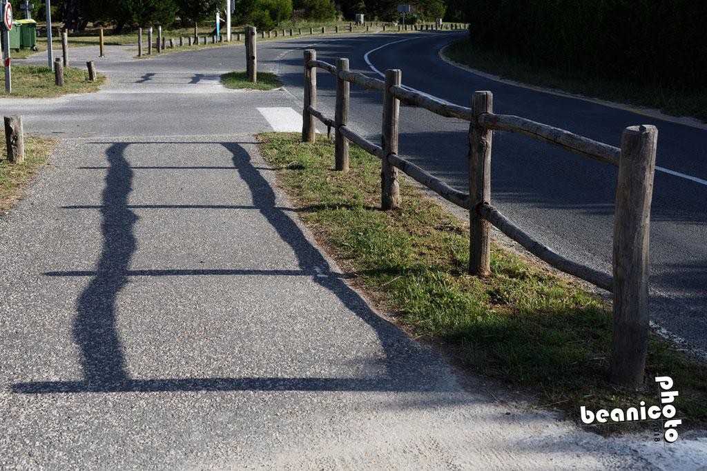 Oléron en lignes parallèles - Ile d'Oléron - www.beanico-photo.fr