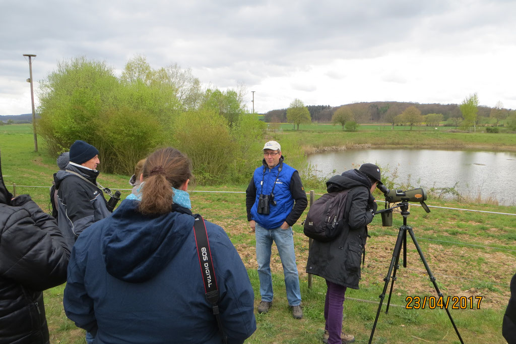 23.04.2017 Wasservogelexkursion an den BT Niederwalgern - Foto: Friedrich-Karl Menz