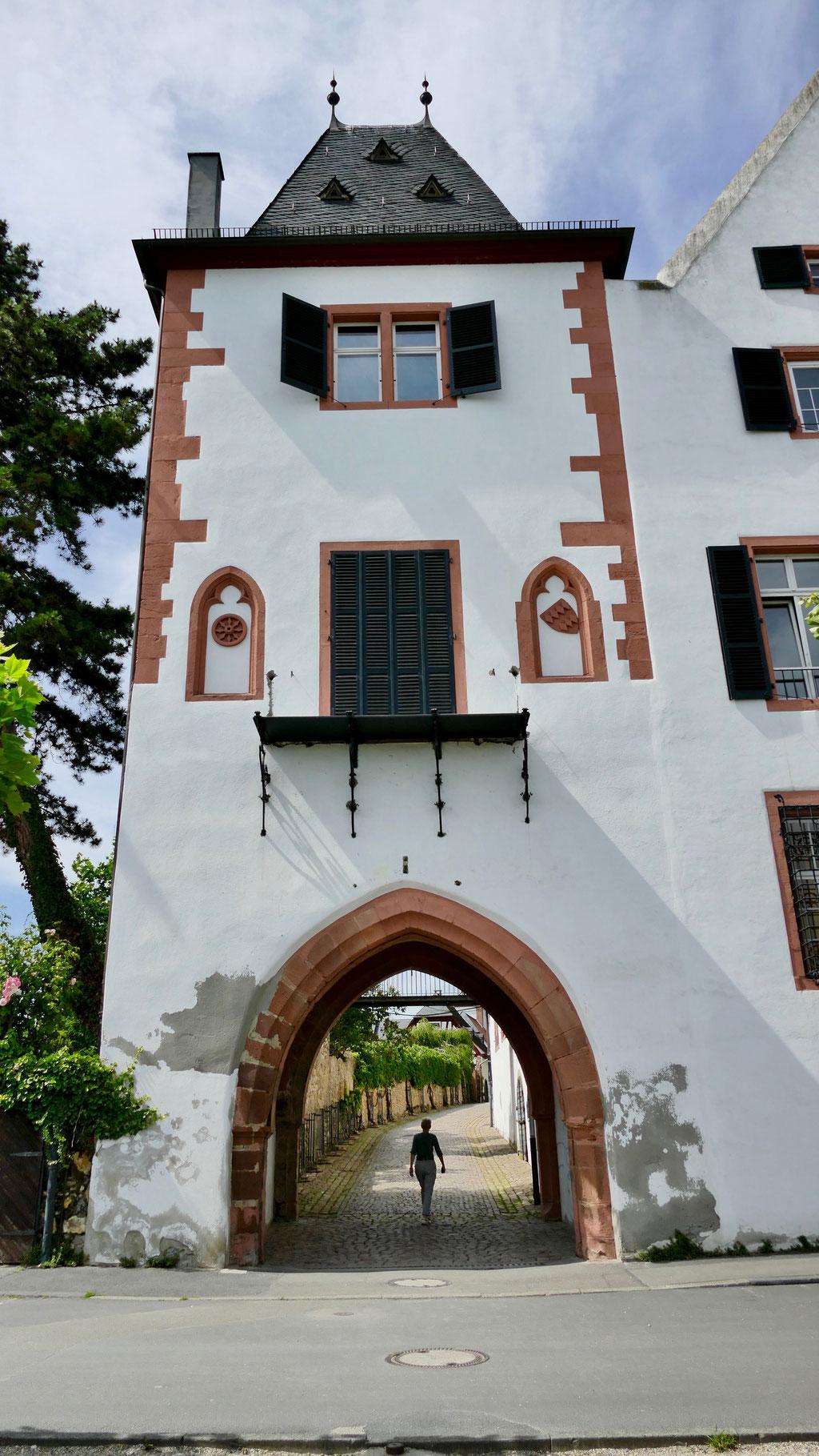 Eltville Stadttor Eltville am Rhein, Wein,Sekt und Rosenstadt