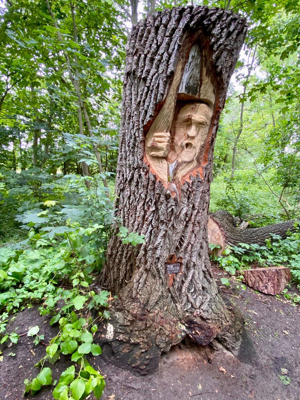 Bild: Baumskulptur