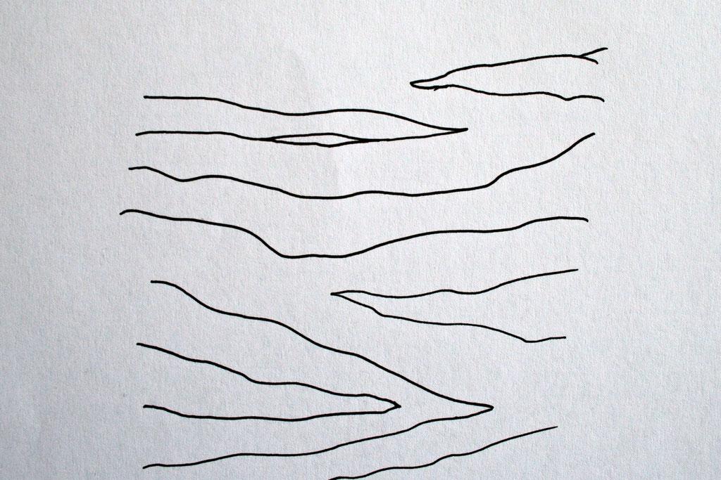 Zebramuster malen Schritt für Schritt - Streifen vorzeichnen 2 - Zebraspider DIY Blog