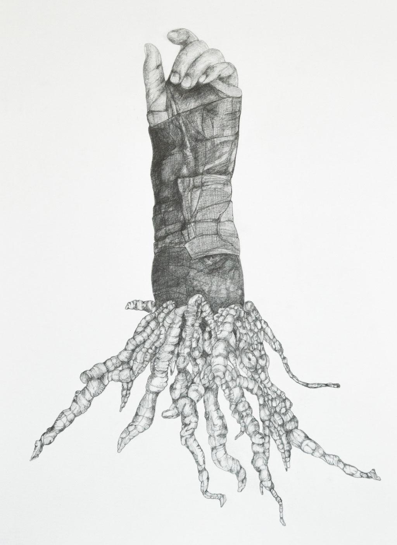 wildwuchs / 44 x 32 cm / bleistift auf papier / 2020