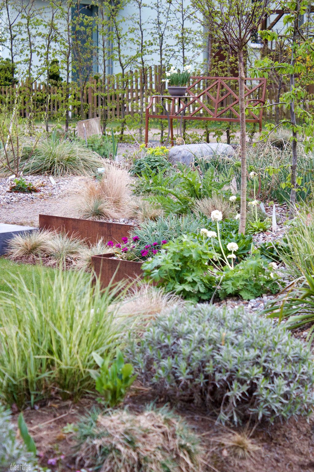 dieartigeGARTEN - Westterrasse, Südgarten mit Zypressenwolfsmilch + Lavendel