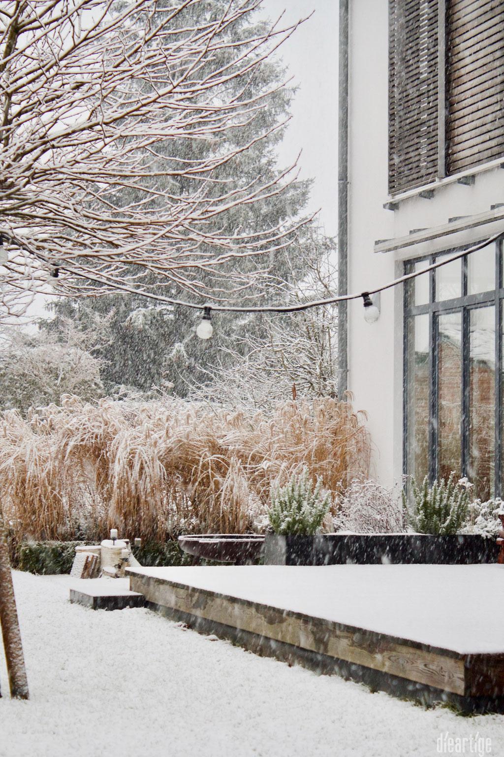 dieartigeBLOG - Schnee im Wintergarten, Chinaschilf + Terrasse