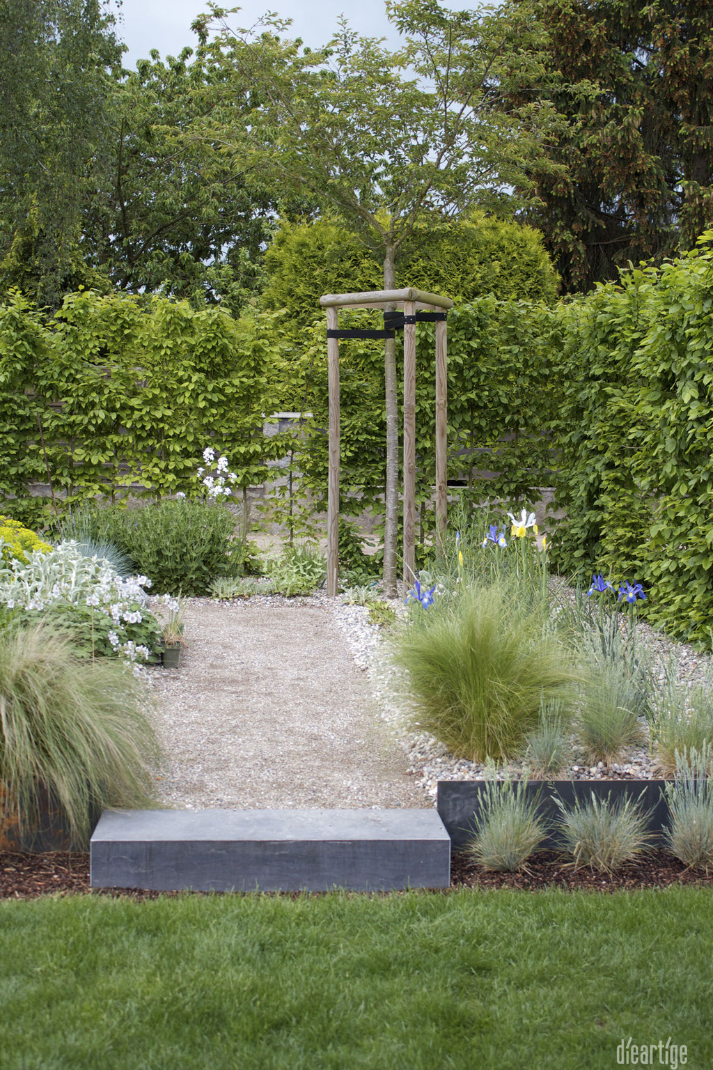 dieartigeBLOG - GARTEN // Steppengarten - Federgras, Lilien, Storchenschnabel, Ziersalbei, Winterkirsche