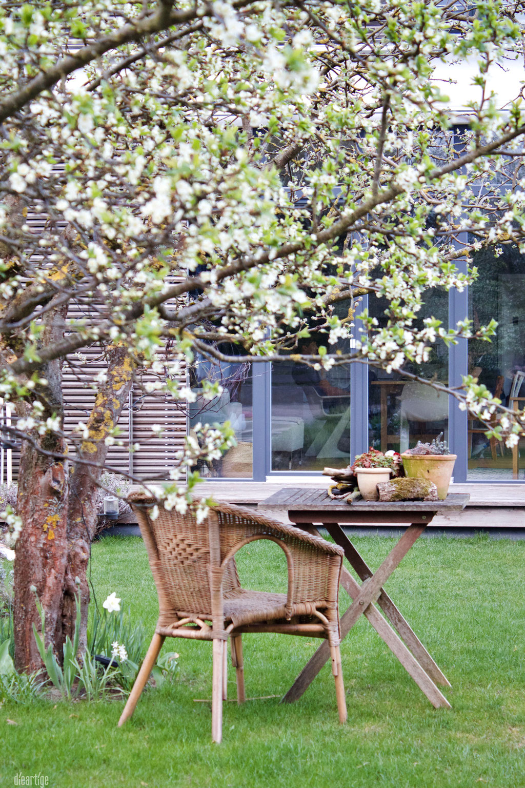 dieartigeGARTEN - Pflaumenblüte + Sitzplatz