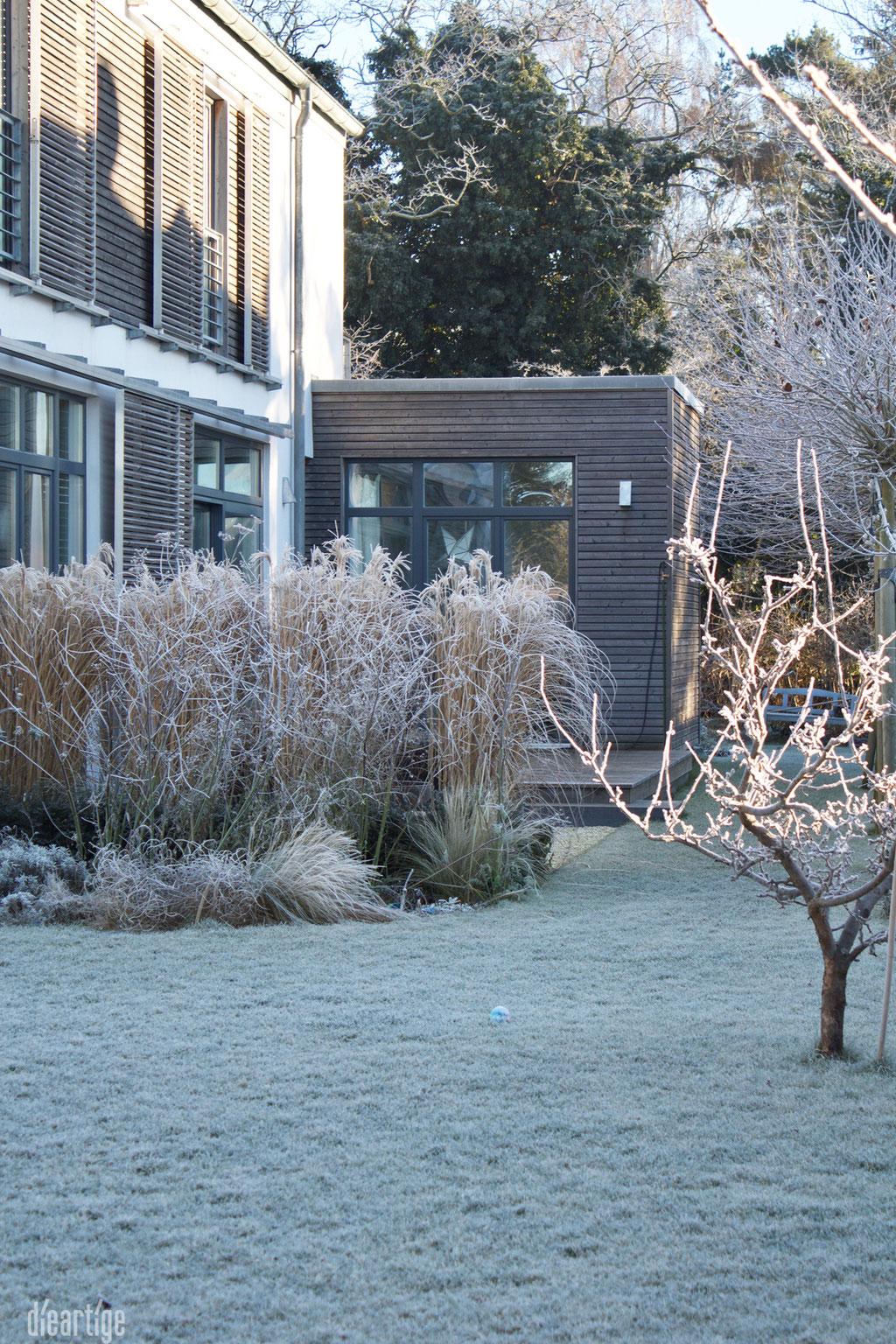dieartigeBLOG - Wintergarten, Rauhreif + Eiskristalle, Chinaschilf + Fenchel