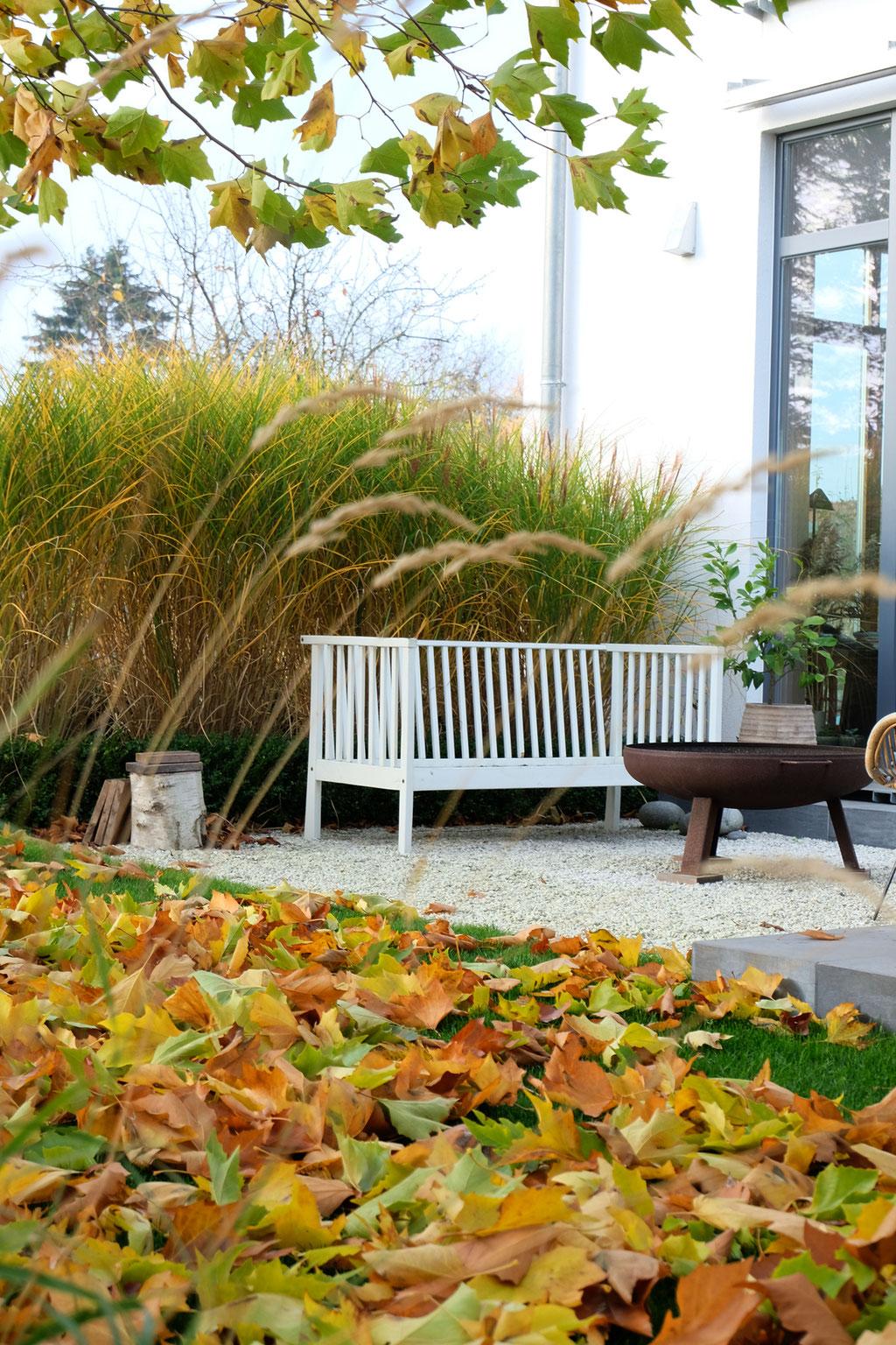 dieartigeGARTEN - Novembergarten | Platanen-Laub, Herbstlaub, goldener Herbst, Blattgold+Gartenbank