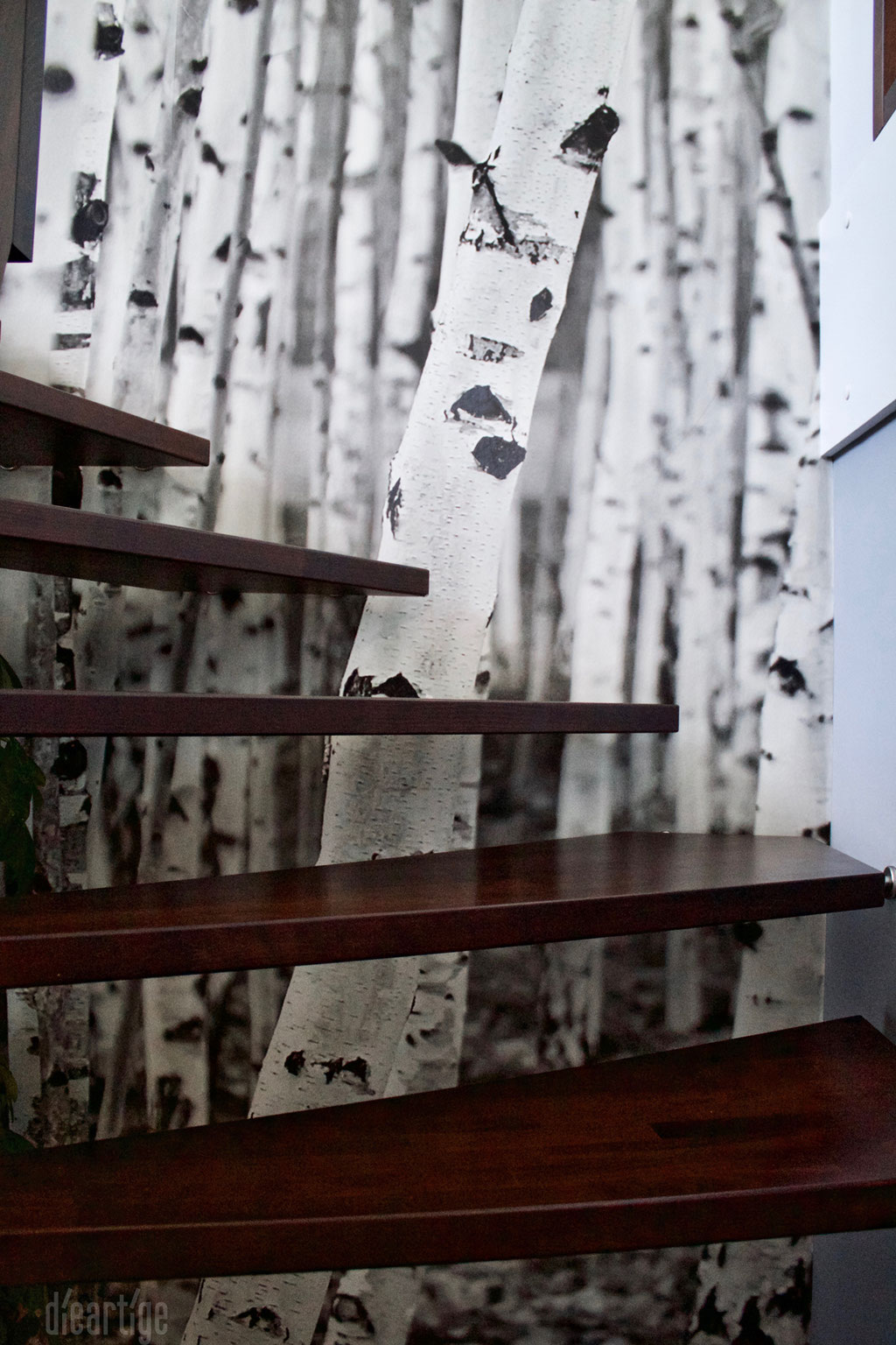 Fam. Z. | Detail Treppe | Fototapete Birkenmotiv | Graue Wand