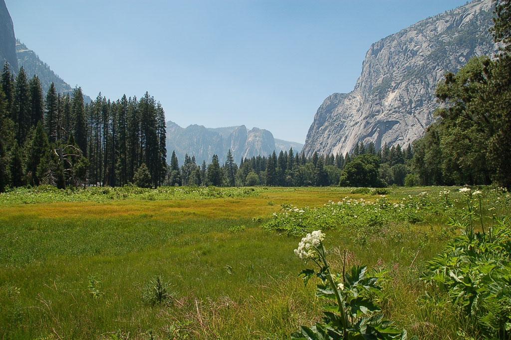 Yosemite National Park - Californie