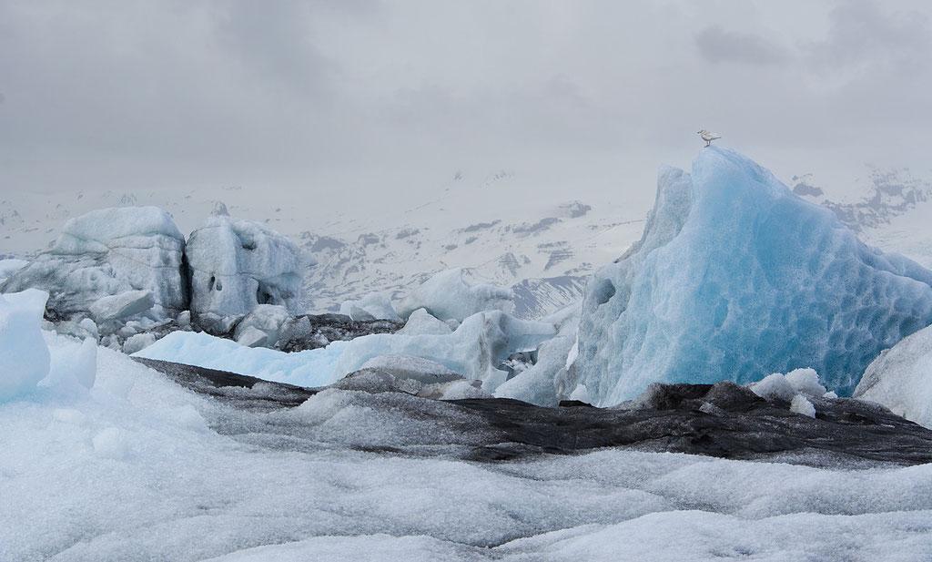 IJsland, Jokulsarlon
