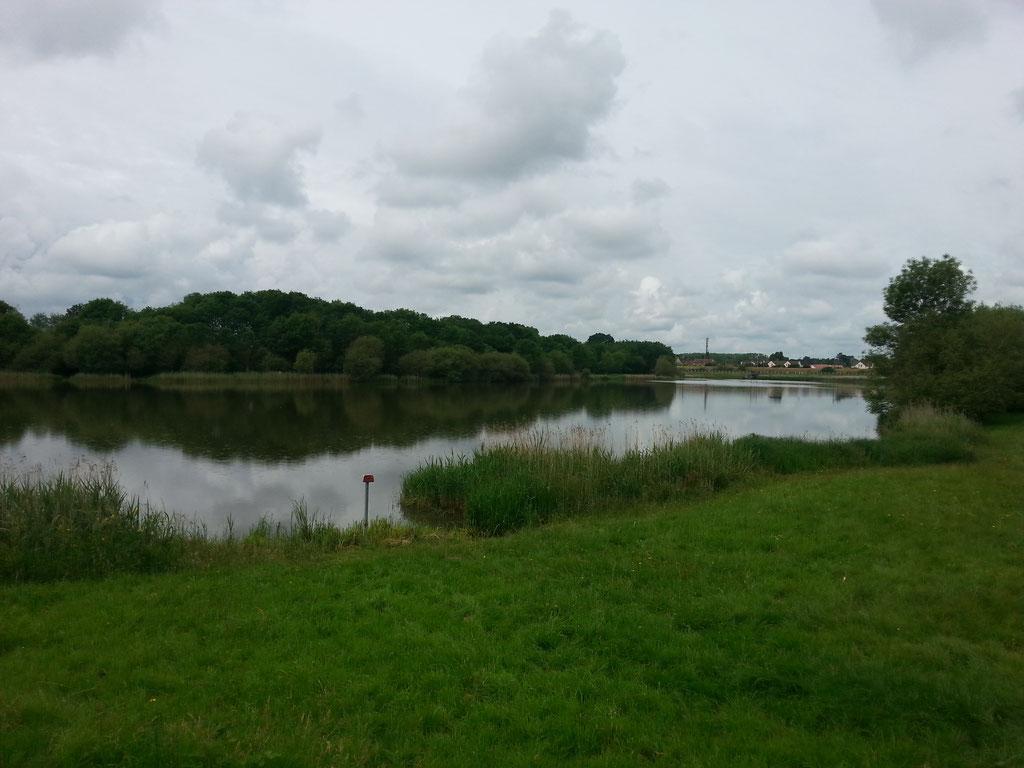 Etang du Perray en Yvelines