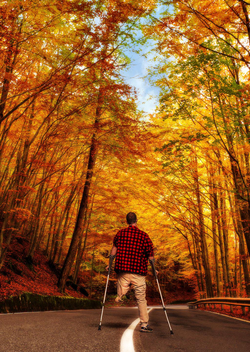 Quando non potrai camminare veloce, cammina. Quando non potrai camminare, usa il bastone. Però, non trattenerti mai.