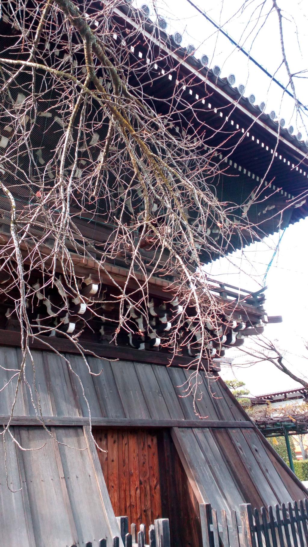 妙蓮寺の袴腰型鐘楼 きれいな鐘の音です。