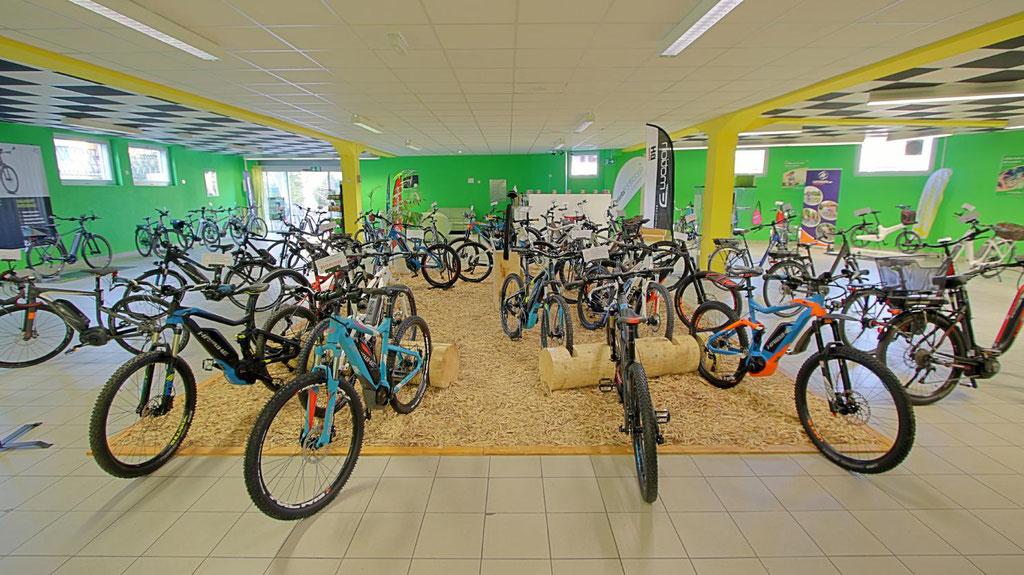 Speed-Pedelecs mit 45 km/h in der e-motion e-Bike Welt Bern in der Schweiz