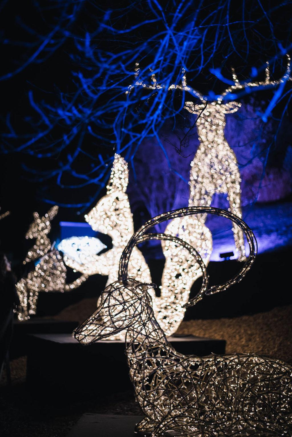 Lichtfestival 2019/20 - Swarovski Kristallwelten - das funkelndste Wintermärchen in den Alpen (Wattens, Tirol)