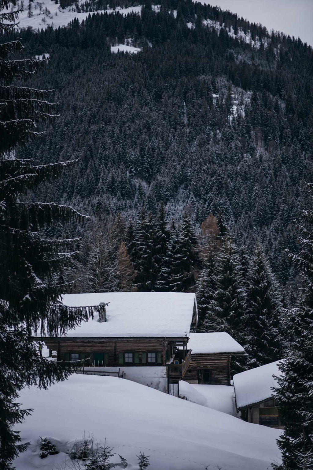 Rodelbahn Haagalm, Hopfgarten, Brixental - Kitzbüheler Alpen
