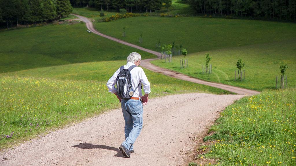 Elzas wandelen