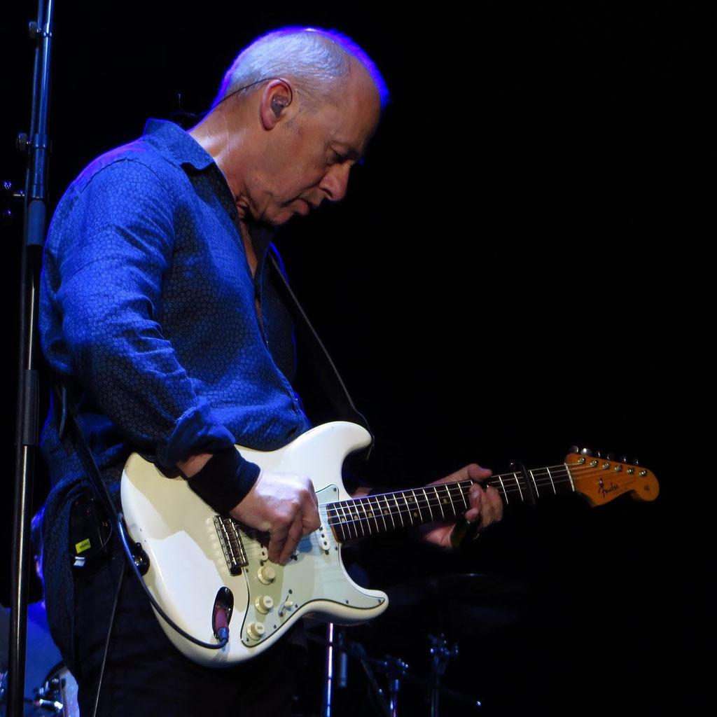 Gitarre: Fender Stratocuster (weiß) ; gespielt: Gator Blood
