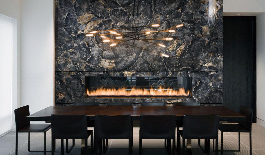 Black Petrified wood fire place