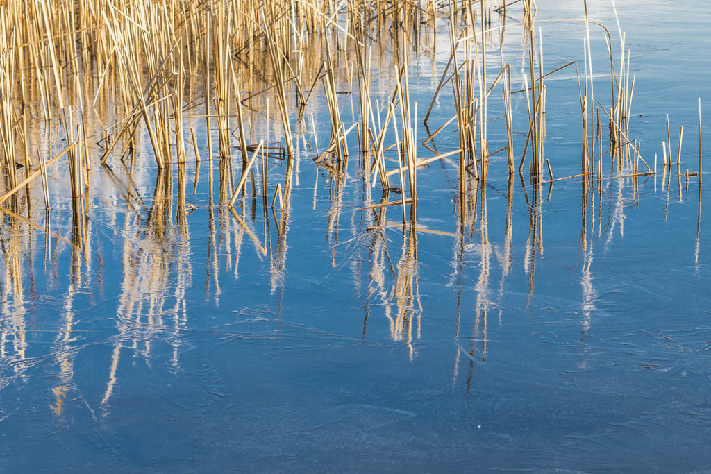 am Ruppiner See bei Neuruppin