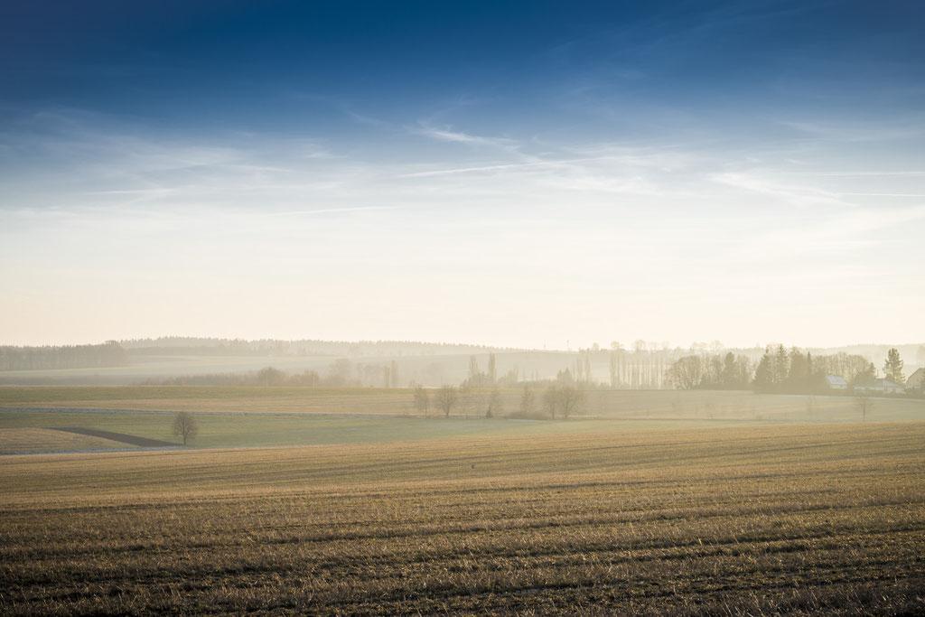 Blick über ein Feld in Limbach Oberfroha in Sachsen