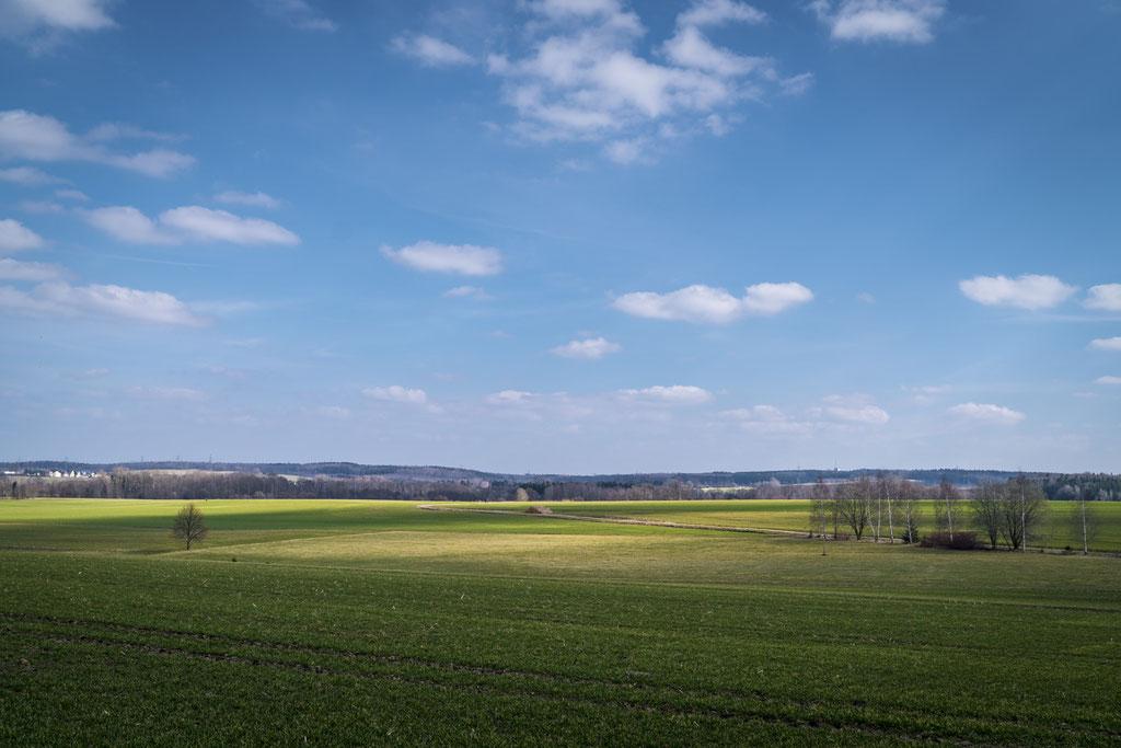 Blick über ein Feld in Limbach Oberfroha