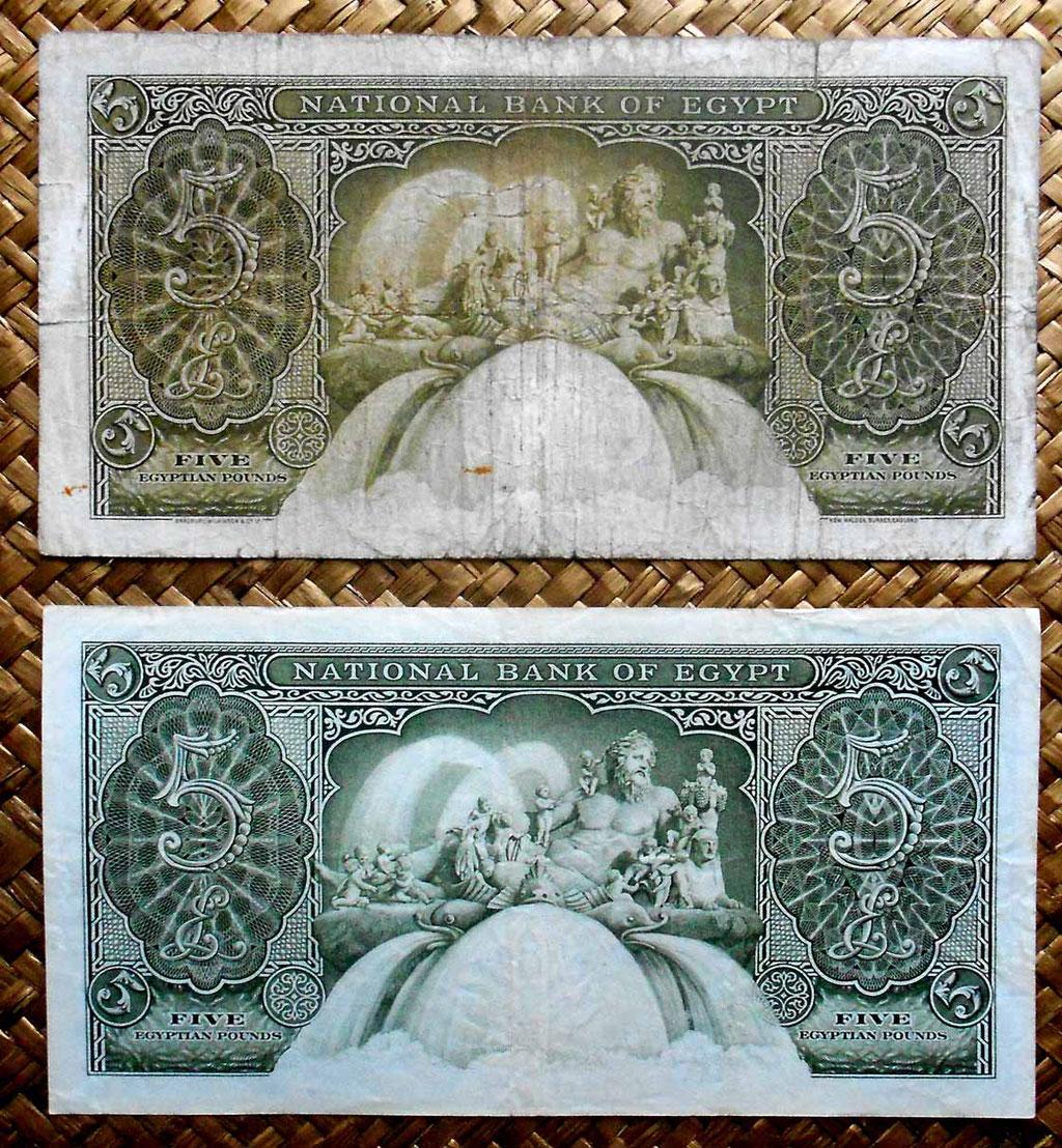 Egipto 5 pounds 1952 vs 5 pounds 1959 reversos