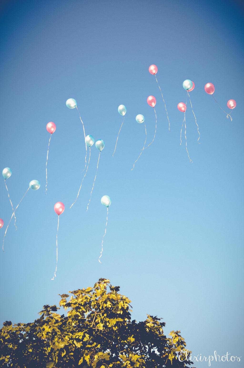 ballons rose bleu ciel