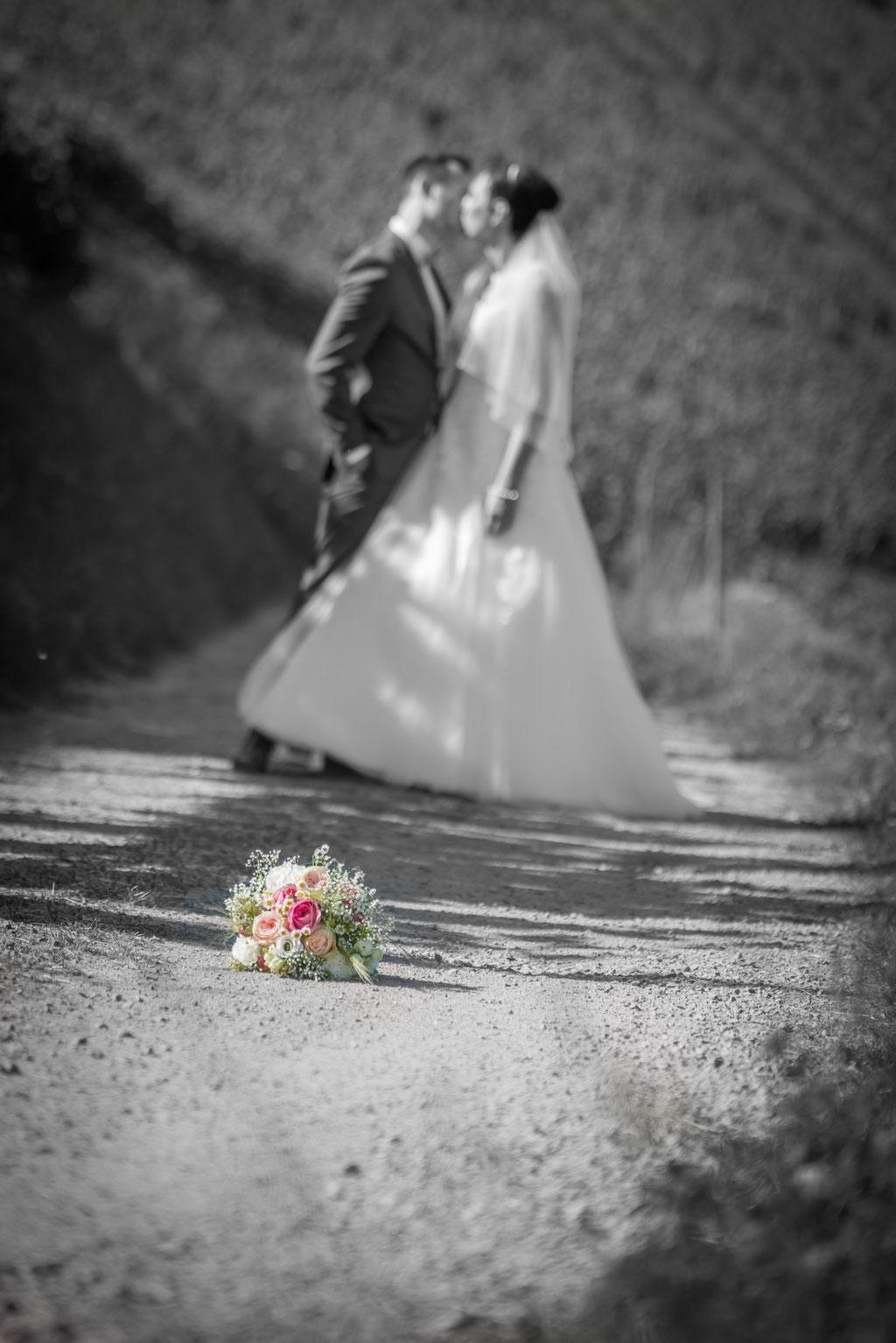 Brautpaaren den Reben / Kappelrodeck / Daniel Keller Hochzeitsfotograf